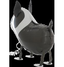 Laufhund Ballon Bulldogge