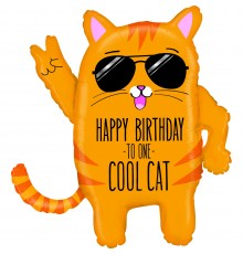 Anniversaire de chat cool