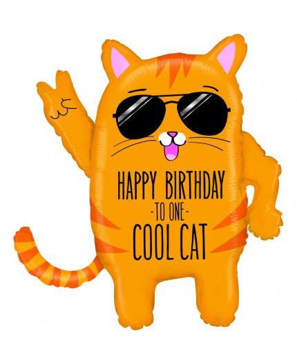 Compleanno simpatico gatto